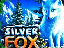 Автомат Новоматик Silver Fox