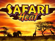 Safari Heat - автомат от Новоматик